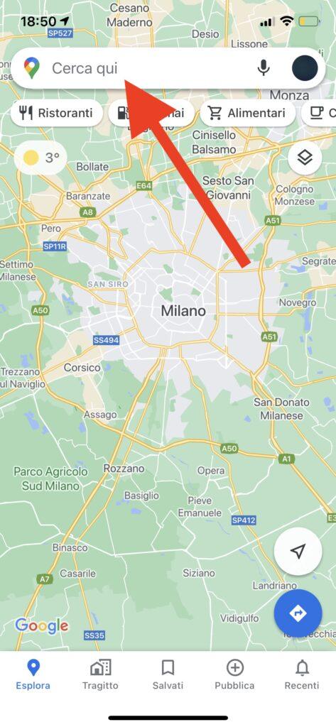 cerca google maps
